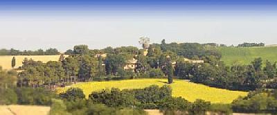 Ferienwohnung Corinaldese-Bilo (870411), Senigallia, Adriaküste (Marken), Marken, Italien, Bild 2