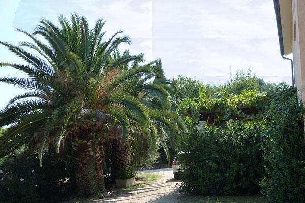 Ferienwohnung Podere Paolo-Mare (870402), Fermo, Fermo, Marken, Italien, Bild 4