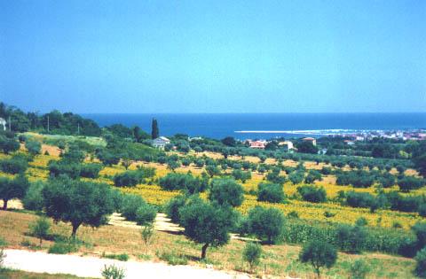 Ferienwohnung Podere Paolo-Mare (870402), Fermo, Fermo, Marken, Italien, Bild 11