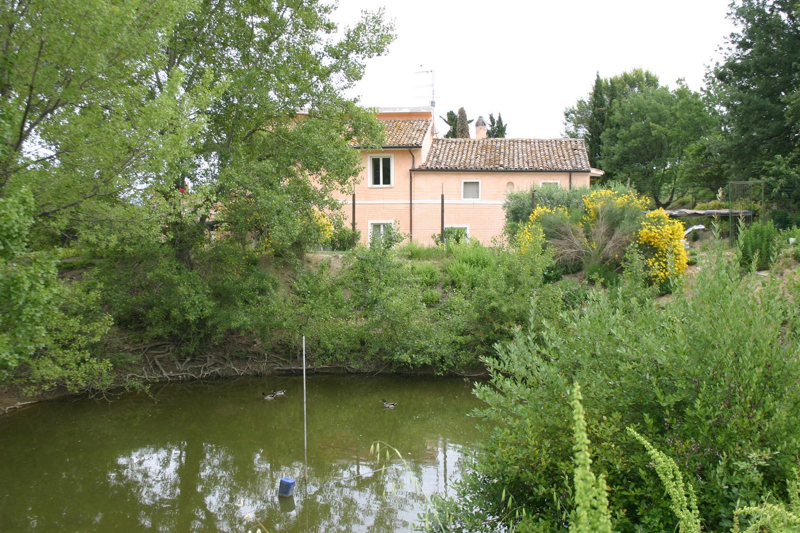 Ferienwohnung Podere Paolo-Grande (870414), Fermo, Fermo, Marken, Italien, Bild 19
