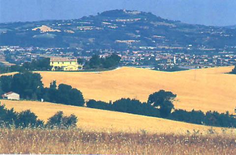 Ferienwohnung Podere Paolo-Terrazzo (870415), Fermo, Fermo, Marken, Italien, Bild 9
