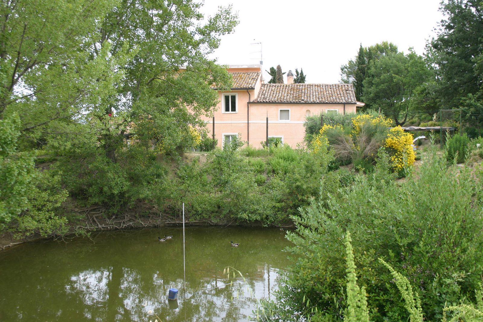 Ferienwohnung Podere Paolo-Terrazzo (870415), Fermo, Fermo, Marken, Italien, Bild 19