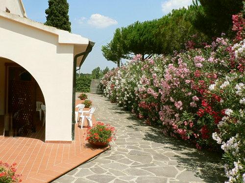 Ferienwohnung Vecchi-BP (870865), Campiglia Marittima, Livorno, Toskana, Italien, Bild 4