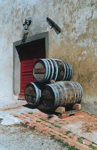 Ferienwohnung Borghetto-Giaggioli (871017), Montespertoli, Florenz - Chianti - Mugello, Toskana, Italien, Bild 11