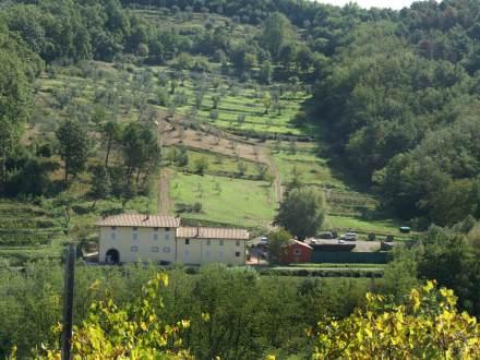 Holiday house Niccoli (996431), Serravalle Pistoiese, Pistoia, Tuscany, Italy, picture 4