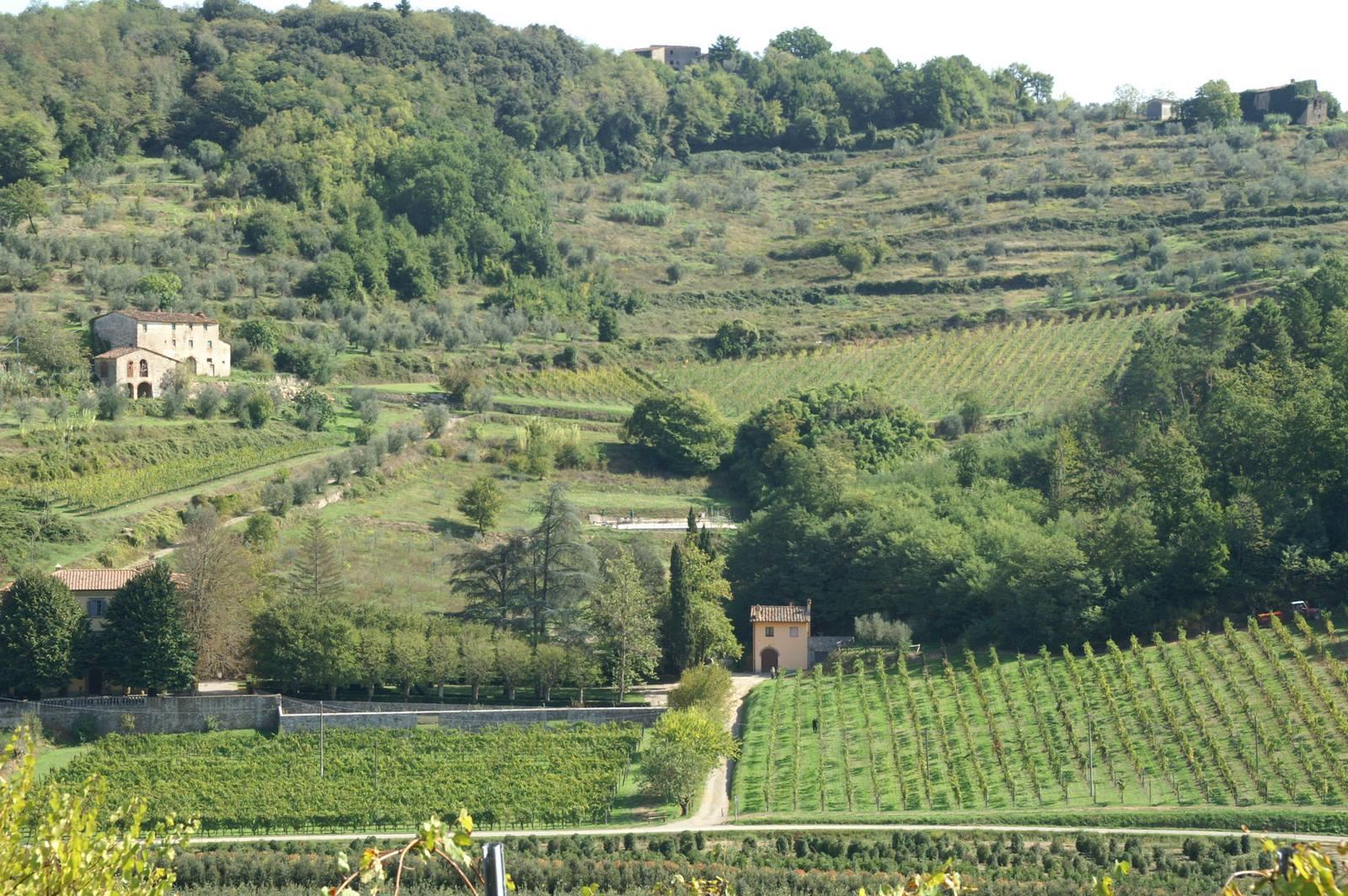 Holiday house Niccoli (996431), Serravalle Pistoiese, Pistoia, Tuscany, Italy, picture 9