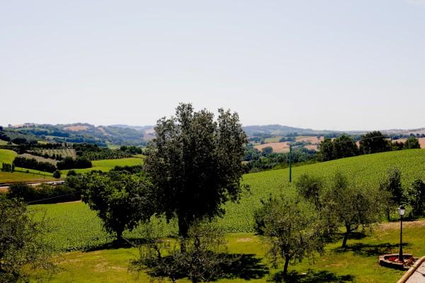 Ferienwohnung ULIVO CANDELARA (1330032), Candelara, Adriaküste (Marken), Marken, Italien, Bild 11
