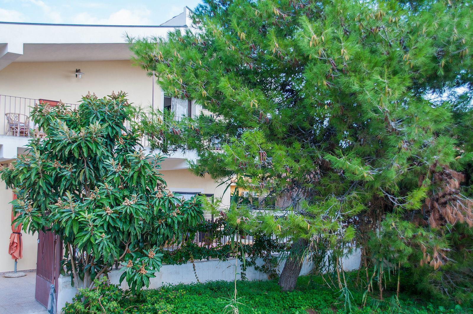 Appartement de vacances Casa Corrado (1540085), Avola, Siracusa, Sicile, Italie, image 17