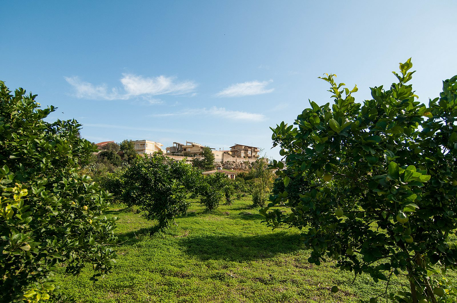 Maison de vacances Villetta a Lido (1540086), Lido di Noto, Siracusa, Sicile, Italie, image 28