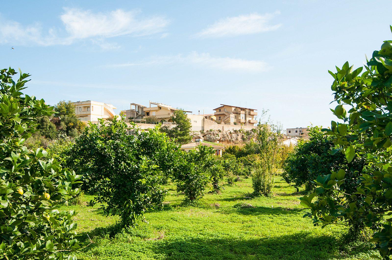 Maison de vacances Villetta a Lido (1540086), Lido di Noto, Siracusa, Sicile, Italie, image 29